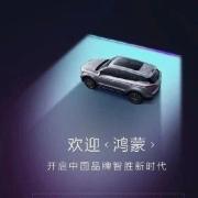 神速!首款鸿蒙OS汽车曝光:首发竟是它